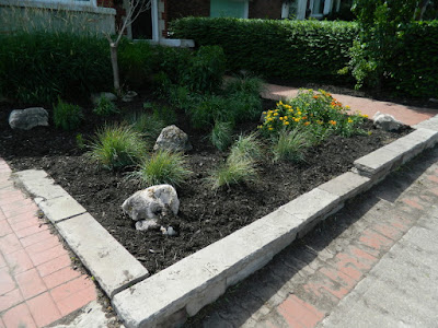 Midtown Toronto Summer Front Garden Cleanup After by Paul Jung Gardening Services Inc.--a Toronto Gardening Company
