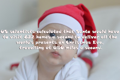 funny christmas facts