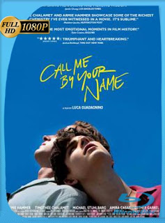 Call Me by Your Name (2017) HD [1080p] Subtitulado [GoogleDrive] SilvestreHD