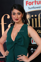 Laxmi Rai in a Deep neck Beautiful Green Gown Cute Actress Laxmi Rai ~  084.JPG