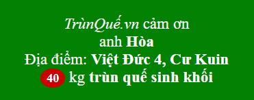 Trùn quế về Việt Đức 4
