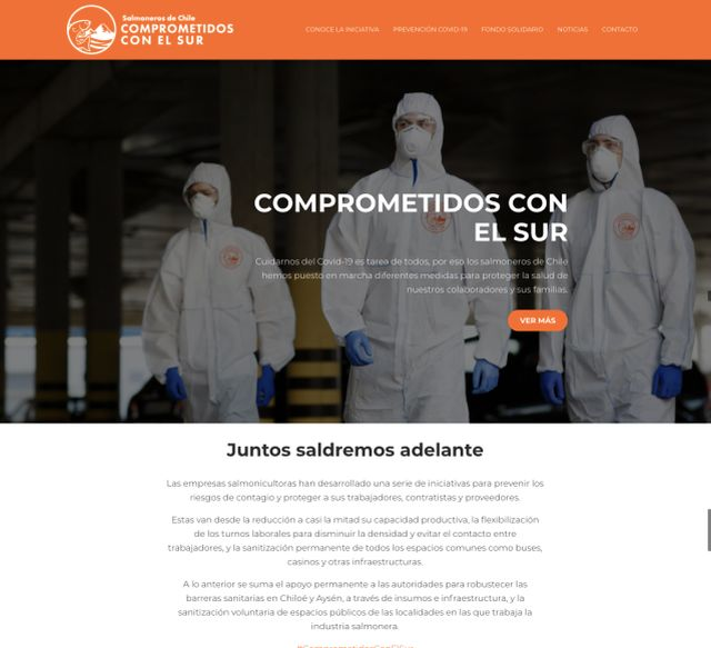 Lanzan sitio web que muestra acciones de la industria salmonera para enfrentar COVID-19