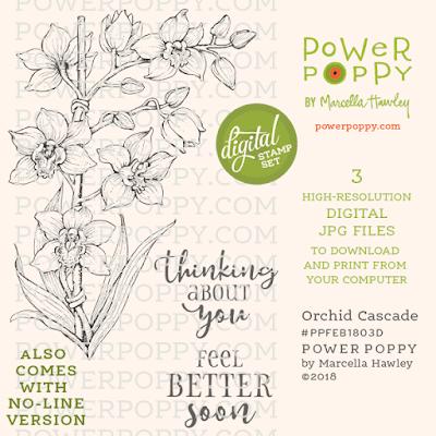Power Poppy, Marcella Hawley, Orchid Cascade, Digital Image, February 2018