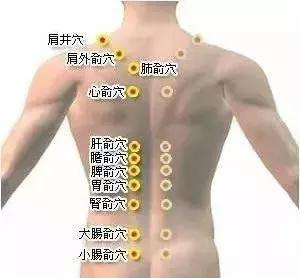 疏通一條線,很多疾病,不知不覺中消失了(膀胱經,背部12個重要穴)膀胱經:1、肺俞,2、大腸俞,3、厥陰俞,4、心俞,5、三焦俞,6、肝俞,7、膽俞,8、小腸俞,9、脾俞,10、胃俞,11、腎俞,12、膀胱俞。