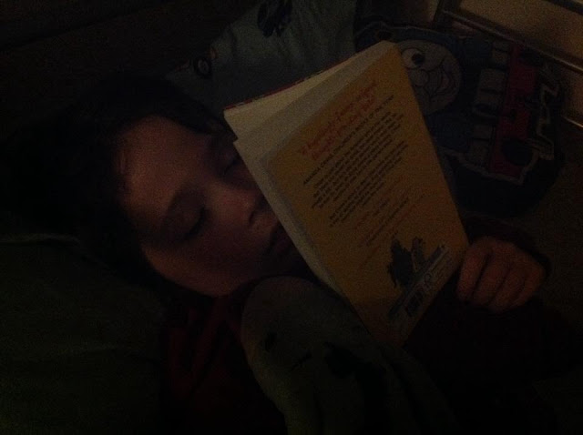 Child Asleep with Book