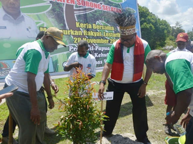 Samsudin Anggiluli dan Martinus Salamuk Tanam Pohon di Konda