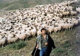 Μπλοκάρονται πληρωμές αποζημιώσεων σε κτηνοτρόφους της Θεσσαλίας
