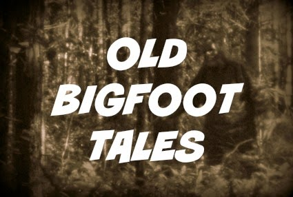 Phantoms and monsters pulse of the paranormal old bigfoot tales fandeluxe Choice Image