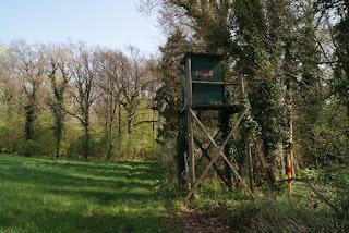 Am Waldrand steht ein grüner Hochsitz. Rechts erstreckt sich ein Feld.