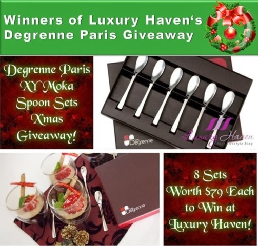 degrenne paris giveaway moka spoons