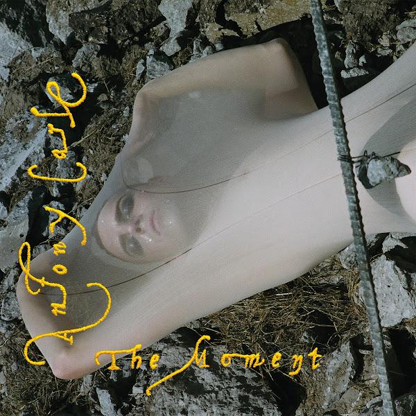 Antony Carle - Save Face - Single Cover
