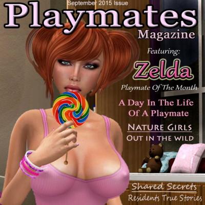 Adult Magzine 100