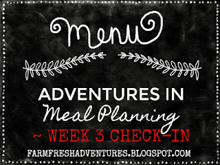 Adventures in Meal Planning~ Week 3