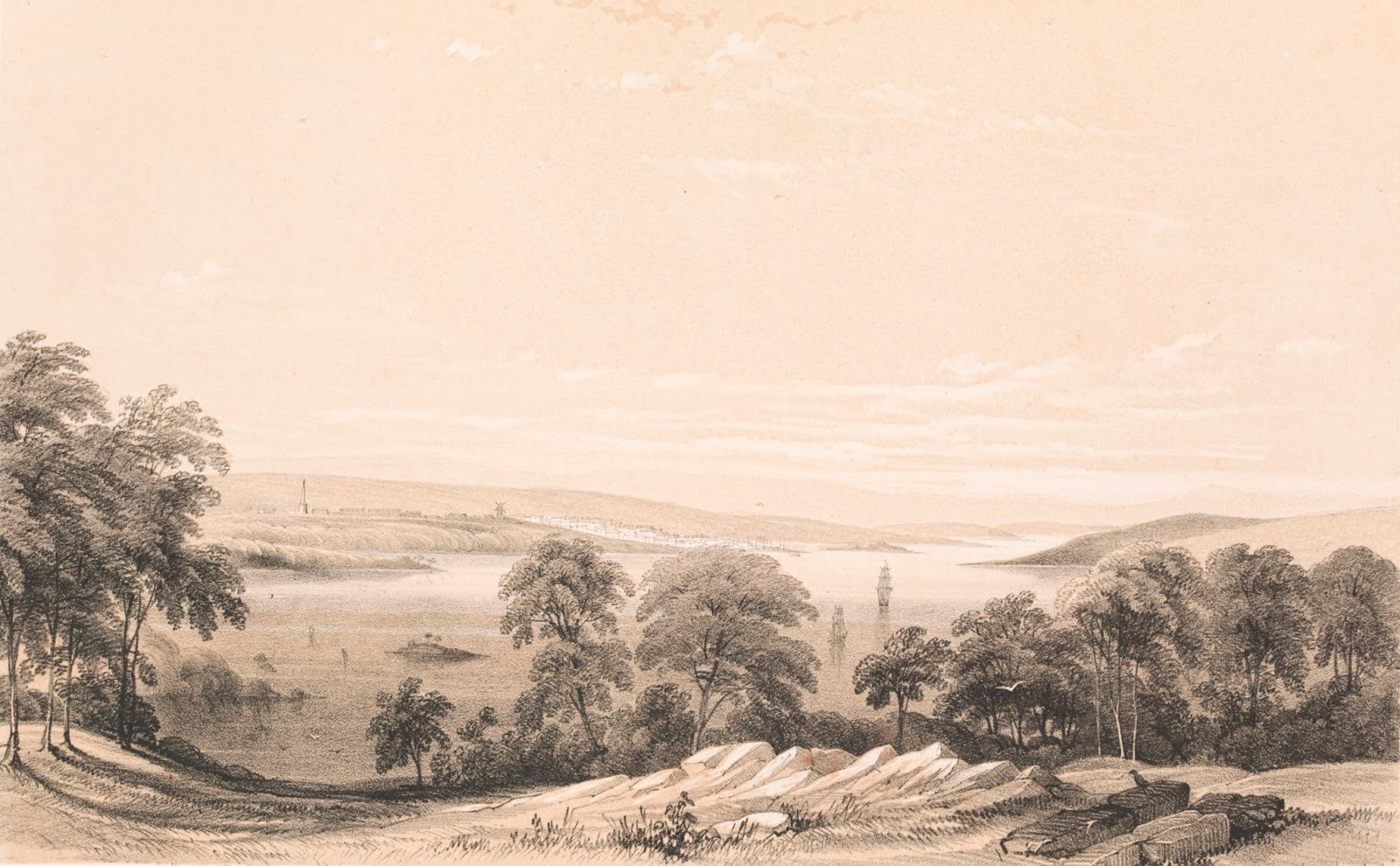 View of Sydney from above Vaucluse c1838