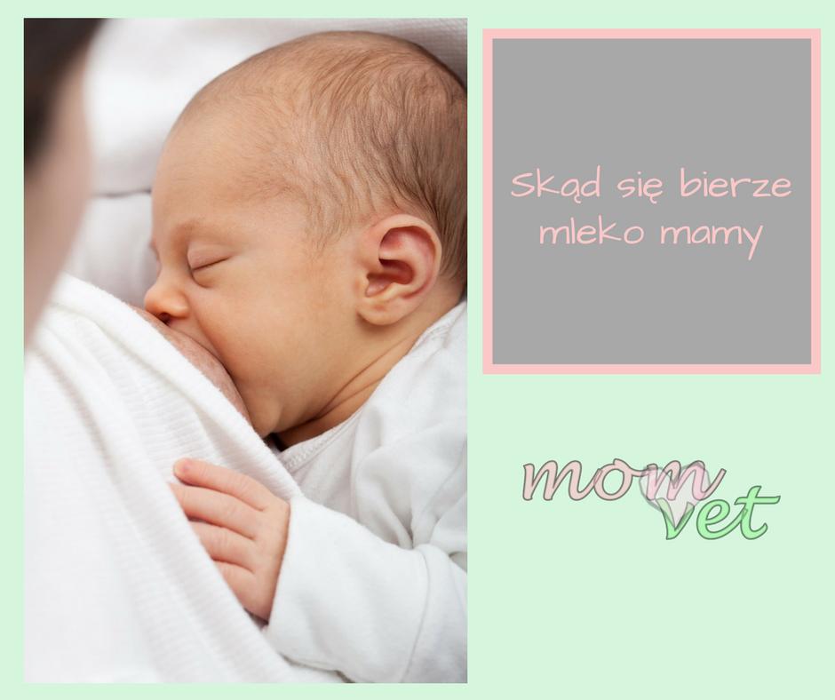 Skąd się bierze mleko mamy