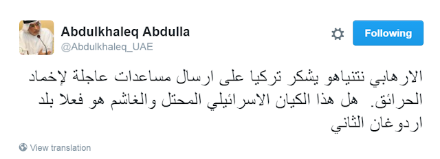 أكاديمي-إماراتي-هل-إسرائيل-بلد-أردوغان-الثاني-كالتشر-عربية