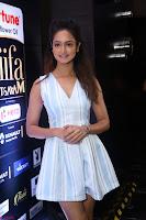 Shanvi Looks super cute in Small Mini Dress at IIFA Utsavam Awards press meet 27th March 2017 114.JPG