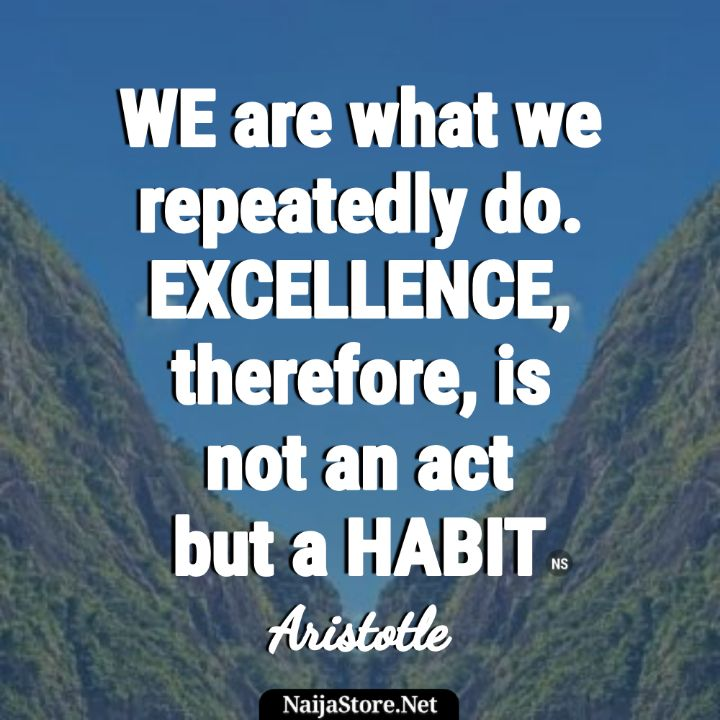Aristotle's Quote WE are what we repeatedly do. EXCELLENCE, therefore, is not an act but a HABIT - Motivational Quotes