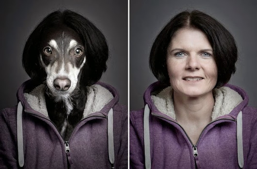 Funny Portraits of Dogs Dressed Like Their Owners