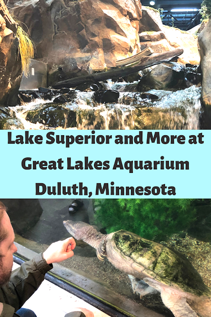 Exploring the Wildlife Wonders and Ecology of Lake Superior and More at the Great Lakes Aquarium