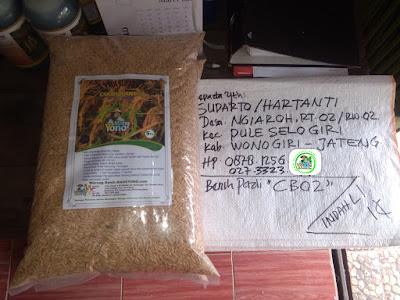 Benih Pesanan   SUDARTO Wonogiri, Jateng.  (Sebelum Packing)
