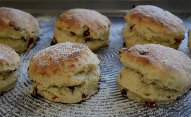 Thermomix Rich Fruit Scones