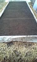 amplasarea tocurilor rasadnitei pe paturile de gunoi cald