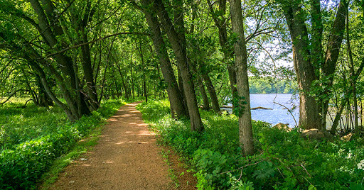 Green Circle Trail - Stevens Point WI
