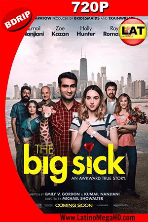 The Big Sick (2017) Latino HD BDRip 720p ()