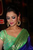 adaa khan latest sizzling pics-thumbnail-28