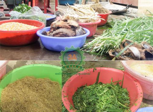 Máy xay nghiền vỏ mía, rơm, xơ dừa