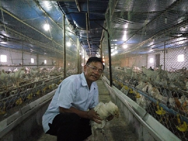Lão nông Nam Định sở hữu 20.000 con gà, lãi 50 triệu đồng/tháng