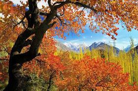 Seasonal%2BTours%2Bin%2BPakistan%2B %2BAutumn%2BTours%252C%2BBlossom%2BTours
