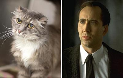 Nicolas Cage Mirip Hewan