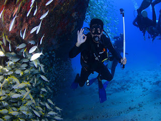 Inilah Spot Menyelam Terbaik di Nusa Penida Bali