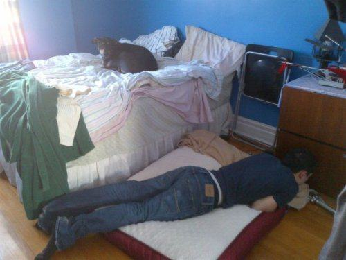 17 Hilarious Problems Dog Owners Will Relate To - When your dog takes over your bed.