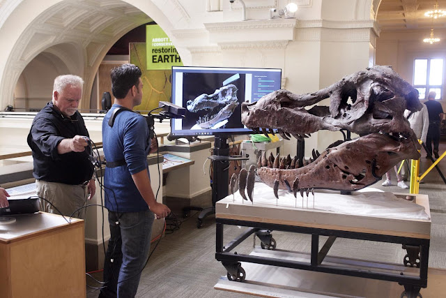 Researchers use Kinect to scan T. rex skull