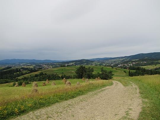 Droga z Maciejowej.