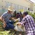 Prefeitura de Prata continua beneficiando famílias com entrega de alimentos