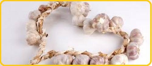 manfaat bawang putih untuk jantung koroner