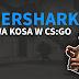 Tigershark Knife - Nowa KOSA w CS:GO!
