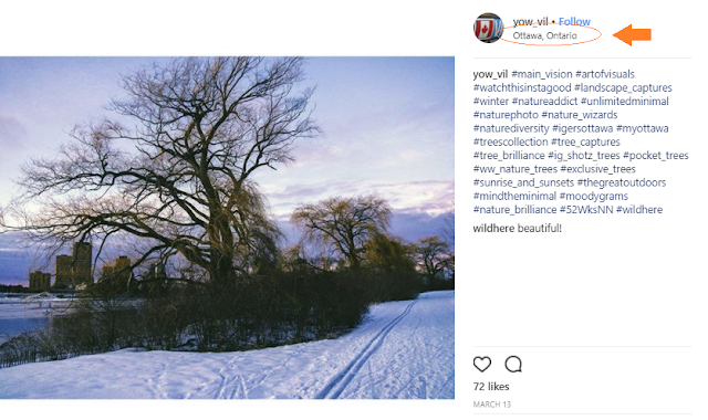 Great Ottawa Nature Instagram Feed Yow_Vil
