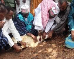 La Guinée à l'instar des autres coreligionnaires, a célébrée ce mardi 21 août la fête d'Aïd El-Kebir, communément appelée la fête de Tabaski.1