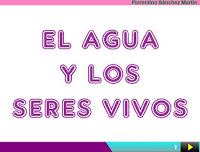 https://cplosangeles.educarex.es/web/segundo_curso/sociales_2/agua_viv02/agua_viv02.html