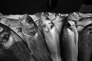 Marché de poissons Place aux Herbes Saint-Tropez
