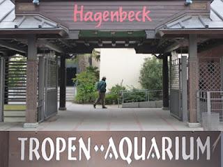 Tropen Aquarium im Tierpark Hagenbeck Hamburg