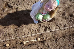 Planting Potatoes With A Little Girl