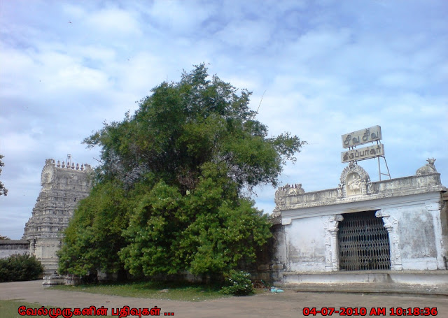 Thirupachur Shiva Temple