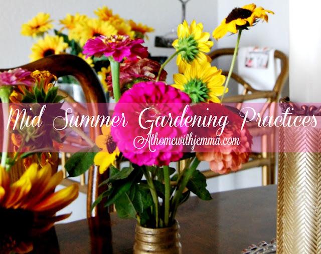 Jemma-gardens-planting-maintenance-Summer