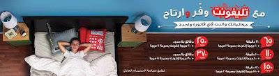 تليفونت من المصرية للاتصالات
